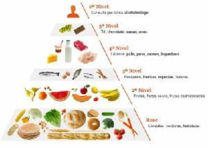 _wsb_300x214_dieta+sana